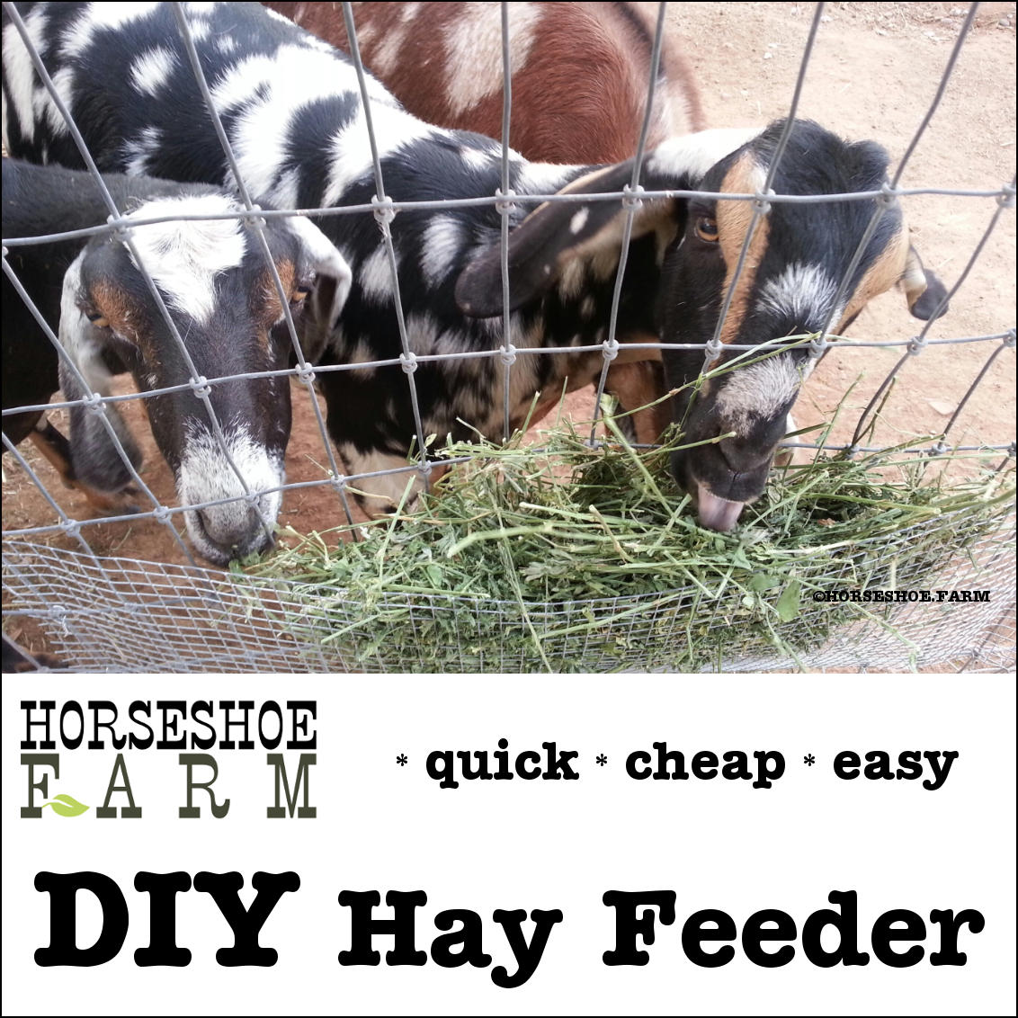 diy hay feeder | horseshoe farm